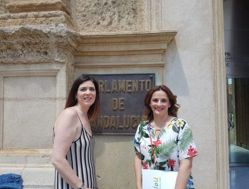 Escuelas Infantiles Unidas expone ante el Parlamento Andaluz una apuesta clara por la Infancia con una Educación Infantil indivisible, exclusiva y acorde a la demanda social